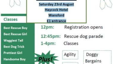 Wansford Dog Show-2