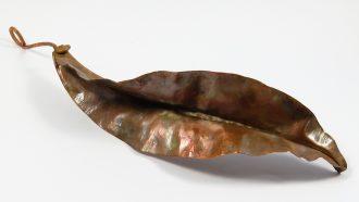 copper-leaf-088-2a